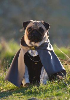 npm pug grunt js less painful than you might think 381